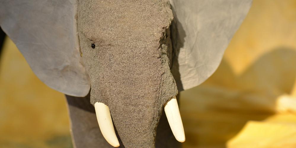 Der mächtige Elefant Elo